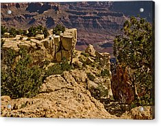 Acrylic Print featuring the photograph Yaki Point 3 The Grand Canyon by Bob and Nadine Johnston