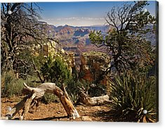 Yaki Point 4 The Grand Canyon Acrylic Print by Bob and Nadine Johnston