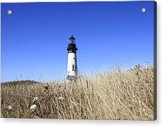 Yaquina Head Lighthouse Acrylic Print by David Gn