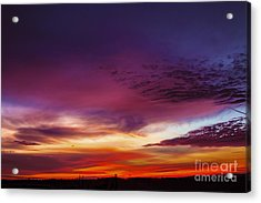 Year End Sunrise Acrylic Print by Michael Waters