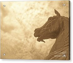 Year Of The Horse Acrylic Print by Kristine Nora