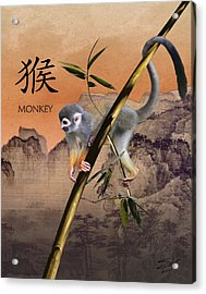 Year Of The Monkey Acrylic Print