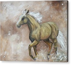 Yearling In Storm Acrylic Print