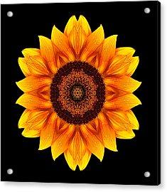 Yellow And Orange Sunflower Vi Flower Mandala Acrylic Print