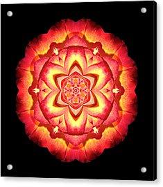 Yellow And Red Rose II Flower Mandalaflower Mandala Acrylic Print