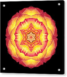 Yellow And Red Rose IIi Flower Mandala Acrylic Print
