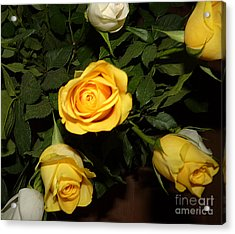 Yellow And White Roses Acrylic Print