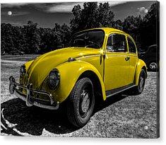 Yellow Beetle 001 Acrylic Print