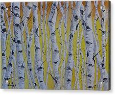 Yellow Birch Acrylic Print