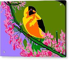 Yellow Bird And Flowerss Acrylic Print by Anand Swaroop Manchiraju