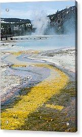 Yellowstone Brick Road Acrylic Print