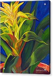 Yellow Bromeliad Acrylic Print