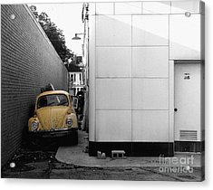 Yellow Bug Acrylic Print by   Joe Beasley