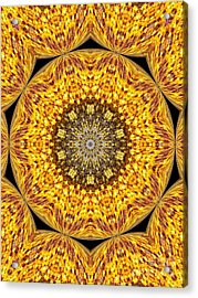 Yellow Burst  Acrylic Print by Annette Allman