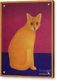 Acrylic Print featuring the painting Yellow Cat by Pamela Clements
