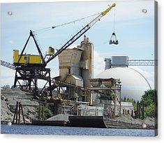 Yellow Crane Acrylic Print