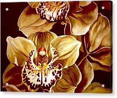 Yellow Cymbidium Orchid Acrylic Print