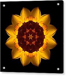 Yellow Daffodil I Flower Mandala Acrylic Print