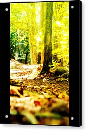 Yellow Discin Day Acrylic Print