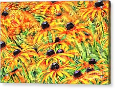 Acrylic Print featuring the photograph Dancing Susans by Geraldine DeBoer