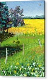 Yellow Field Acrylic Print by Tanya Provines