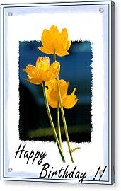 Yellow Flower 2 Acrylic Print
