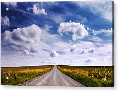 Yellow Flower Road Acrylic Print
