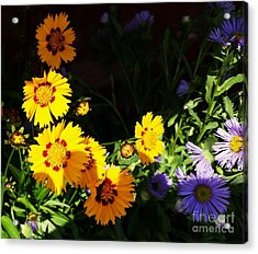 Acrylic Print featuring the photograph Yellow Flower by Rose Wang
