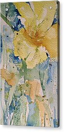 Yellow Flower Study Acrylic Print