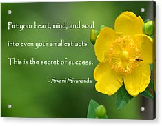 Yellow Flower With Success Quote Acrylic Print