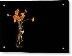 Orange Flowers On Black Background Acrylic Print