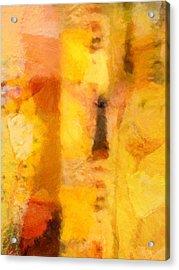 Yellow Garden Acrylic Print by Lutz Baar
