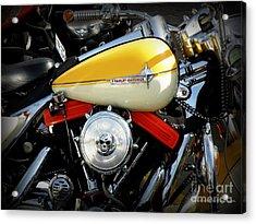Yellow Harley Acrylic Print by Lainie Wrightson