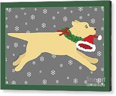 Yellow Labrador Dog Steals Santa's Hat Acrylic Print