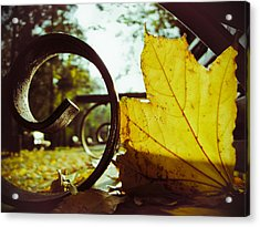 Yellow Leaf On A Bench In A Park Acrylic Print