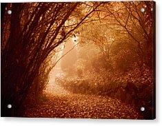 Yellow Leaf Road Acrylic Print
