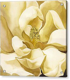 Yellow Magnolia Acrylic Print
