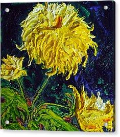 Yellow Mum Acrylic Print by Paris Wyatt Llanso