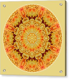 Yellow Orange Mum Mandala Acrylic Print