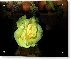 Yellow Rose Acrylic Print by Cecil Fuselier