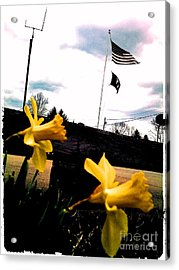 Yellow Salute Acrylic Print by Thommy McCorkle