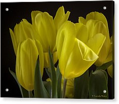 Acrylic Print featuring the photograph Yellow Silk by Lucinda Walter