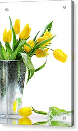 Yellow Spring Tulips Acrylic Print