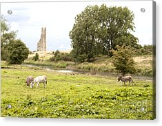 Yellow Steeple Amidst Meath Ireland Acrylic Print