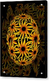 Yellow Sunflower Seed Acrylic Print