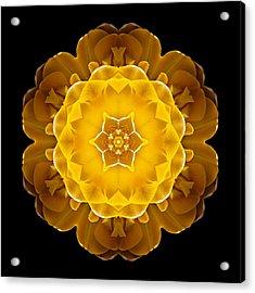 Yellow Tulip II Flower Mandala Acrylic Print