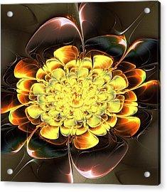Yellow Water Lily Acrylic Print by Anastasiya Malakhova