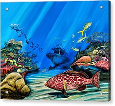 Acrylic Print featuring the painting Yellowfin Grouper Wreck by Steve Ozment