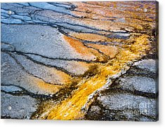 Yellowstone Abstract Acrylic Print