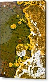 Yellowstone Abstract Acrylic Print by Jamie Pham